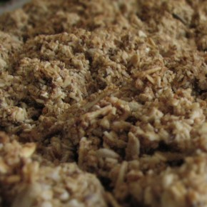 Seeded Granola