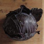 Cabbage Stems