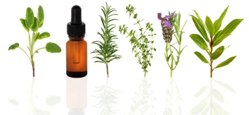 Extracts & Essential Oils