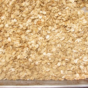 toasted oats