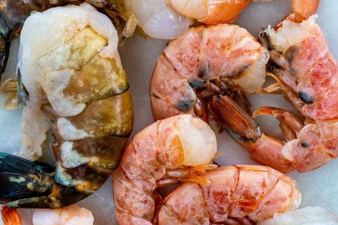 Different Kinds Of Raw Shrimps